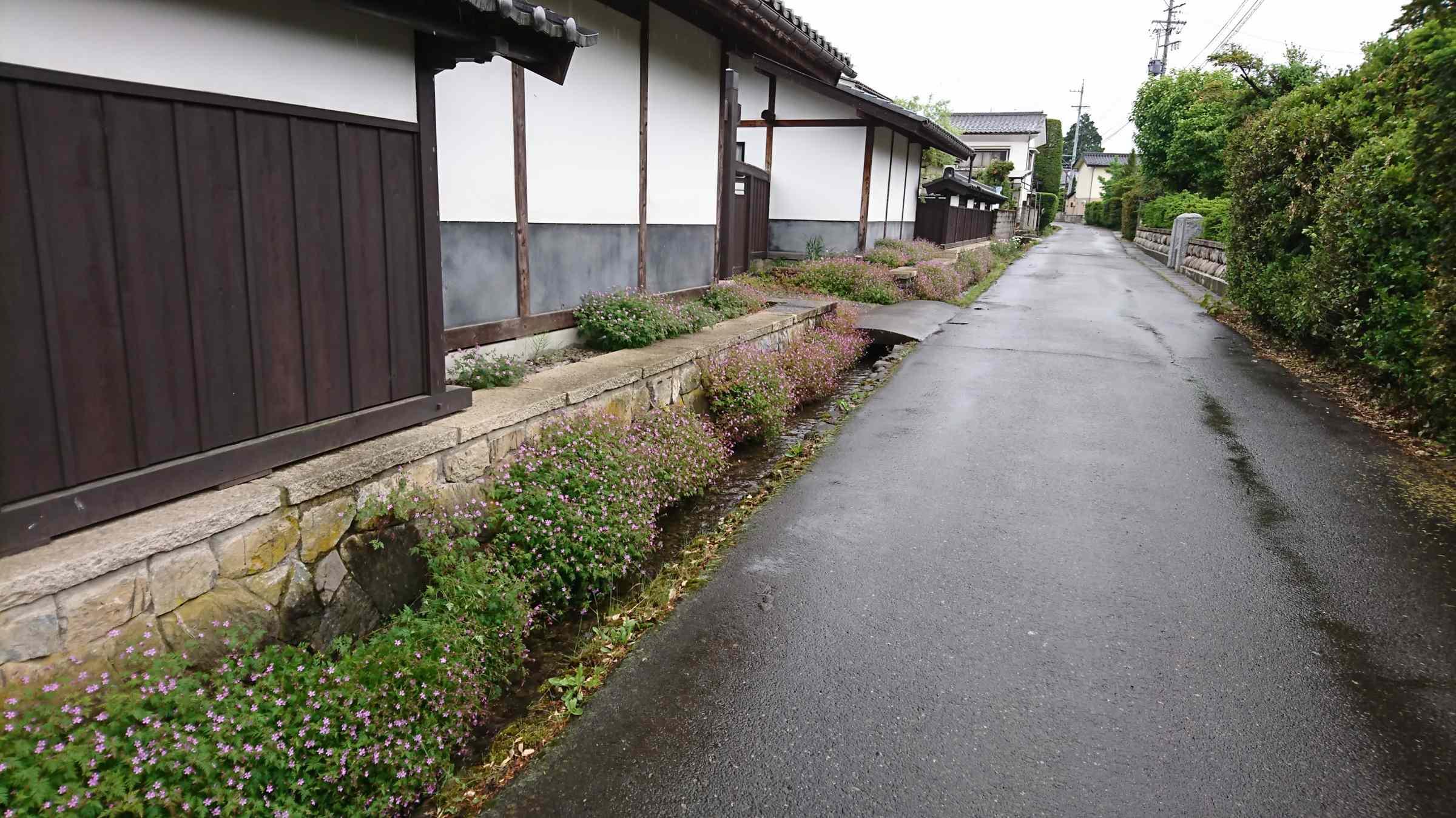 f:id:ynakayama27:20170525173755j:plain