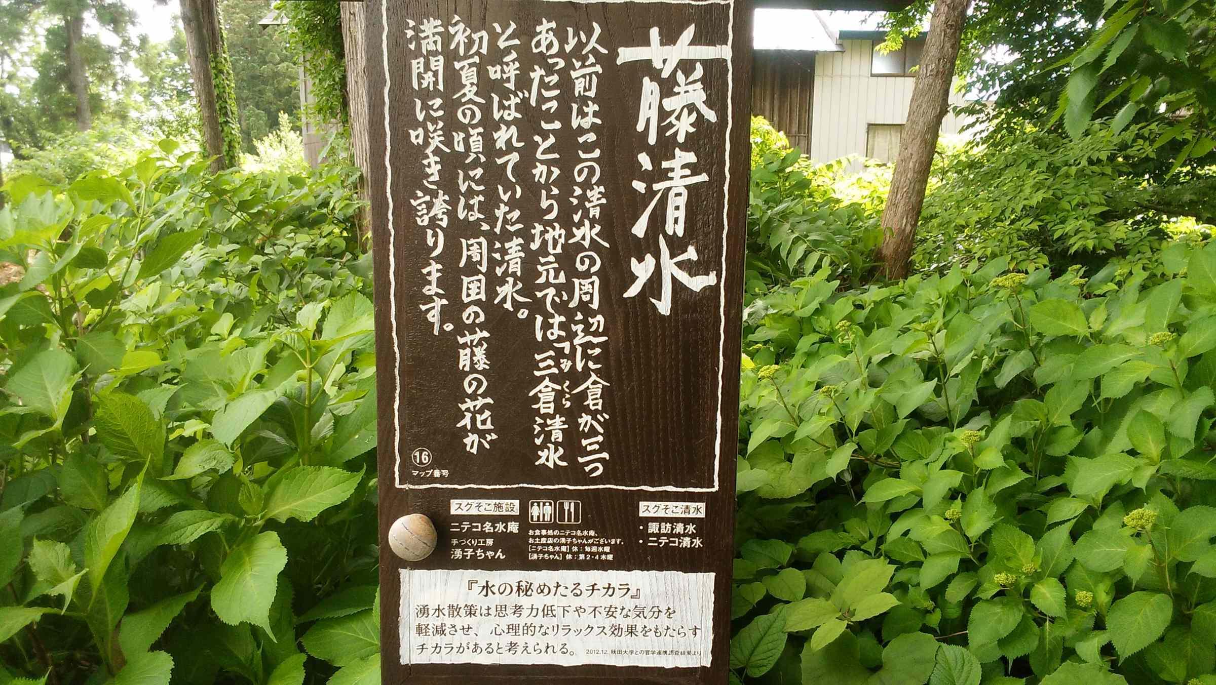 f:id:ynakayama27:20170615154440j:plain