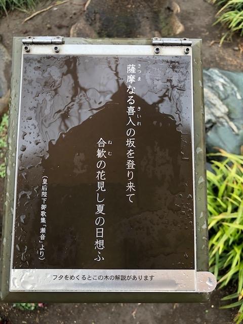 f:id:ynanako:20190307202706j:plain