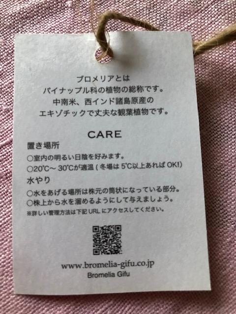 f:id:ynanako:20200504174115j:plain
