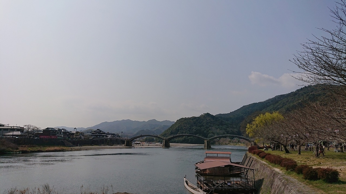 錦帯橋と桜と岩国藩鉄砲隊