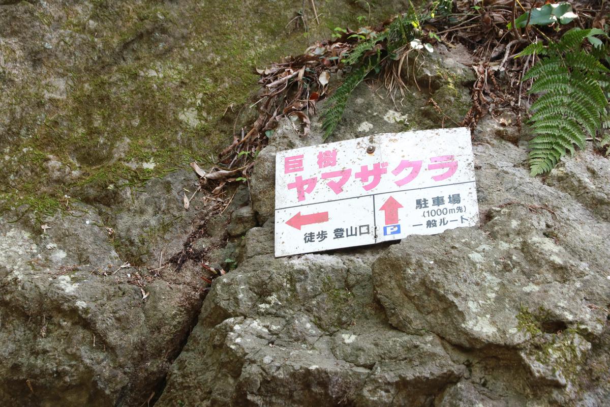 f:id:yo-ji03:20200412173451j:plain