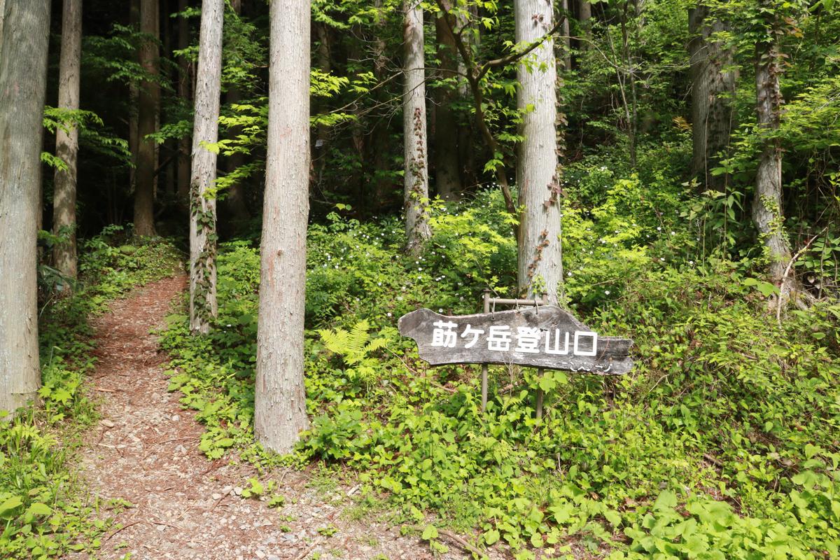 f:id:yo-ji03:20200529001957j:plain