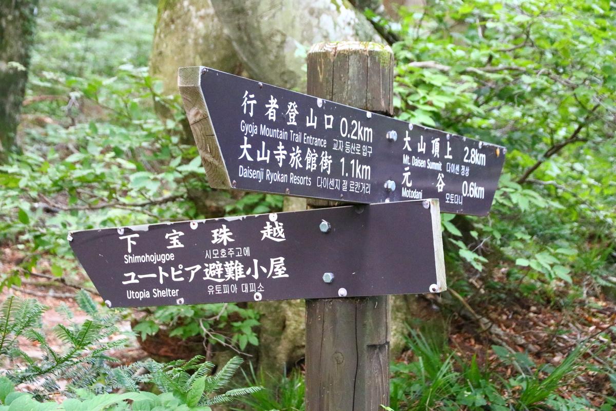 f:id:yo-ji03:20200815141838j:plain