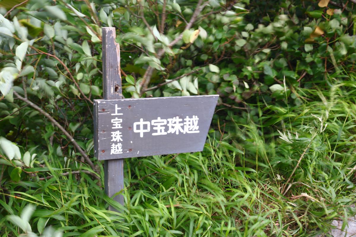 f:id:yo-ji03:20200815142457j:plain