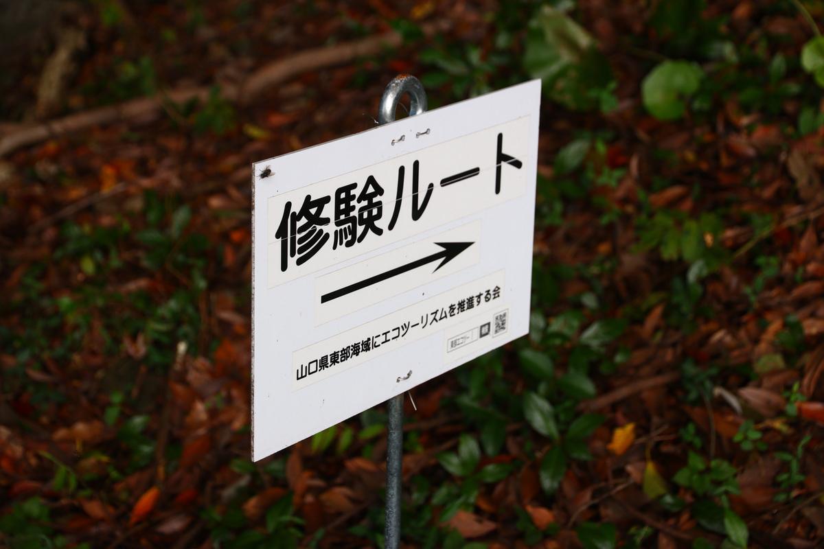 f:id:yo-ji03:20200918143615j:plain