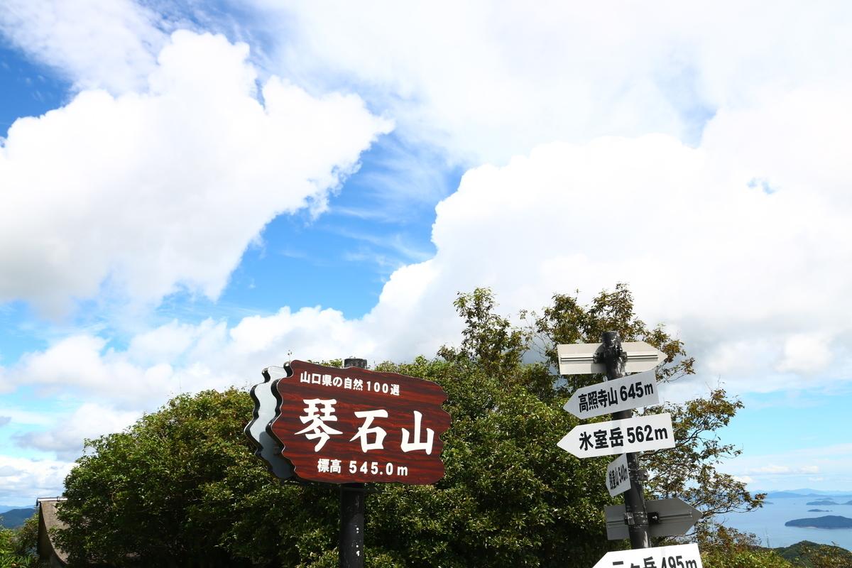 f:id:yo-ji03:20200918144705j:plain