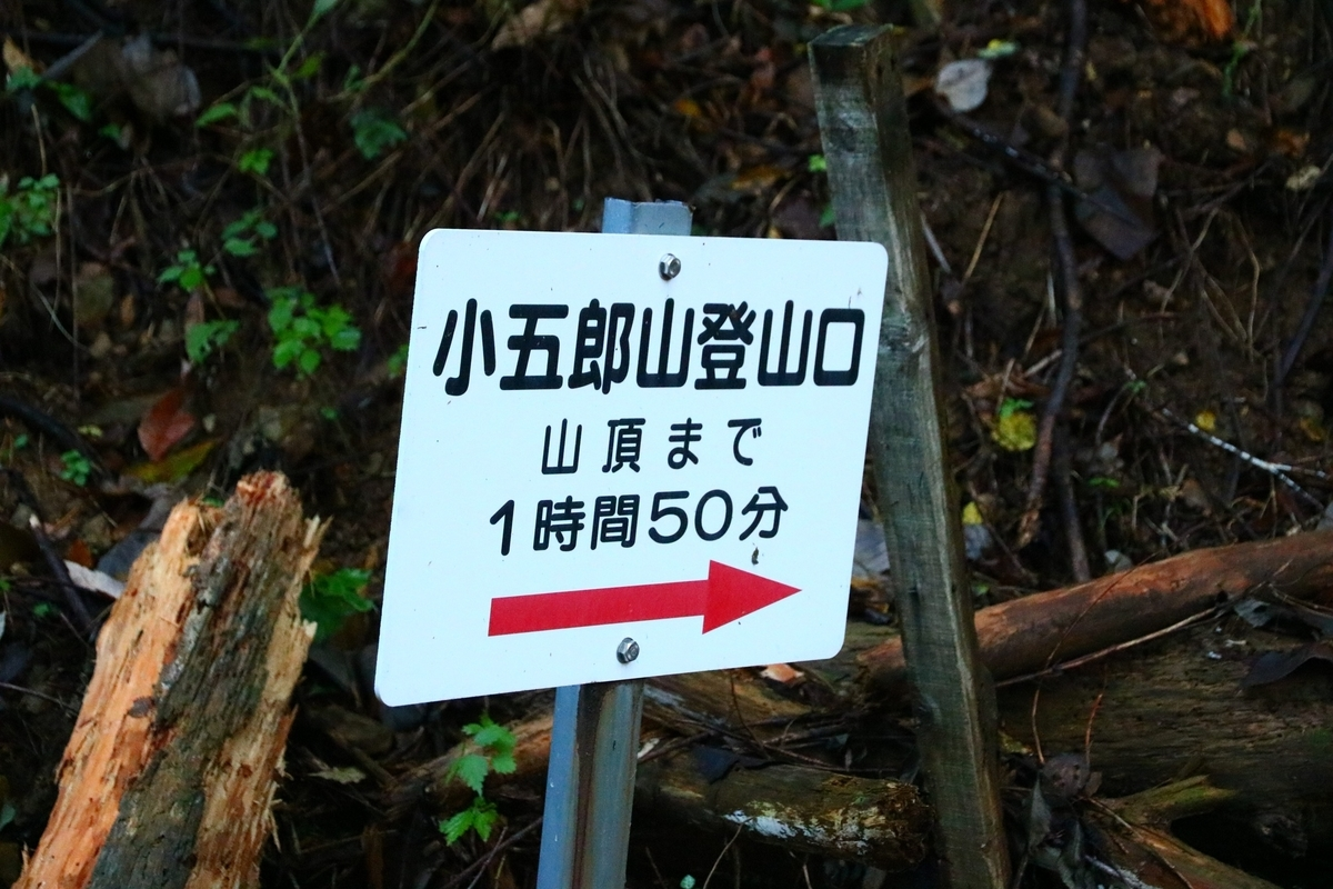 f:id:yo-ji03:20201108155628j:plain