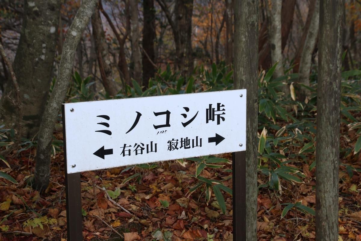 f:id:yo-ji03:20201108162349j:plain