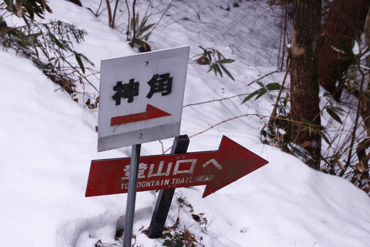 f:id:yo-ji03:20210123204903j:plain