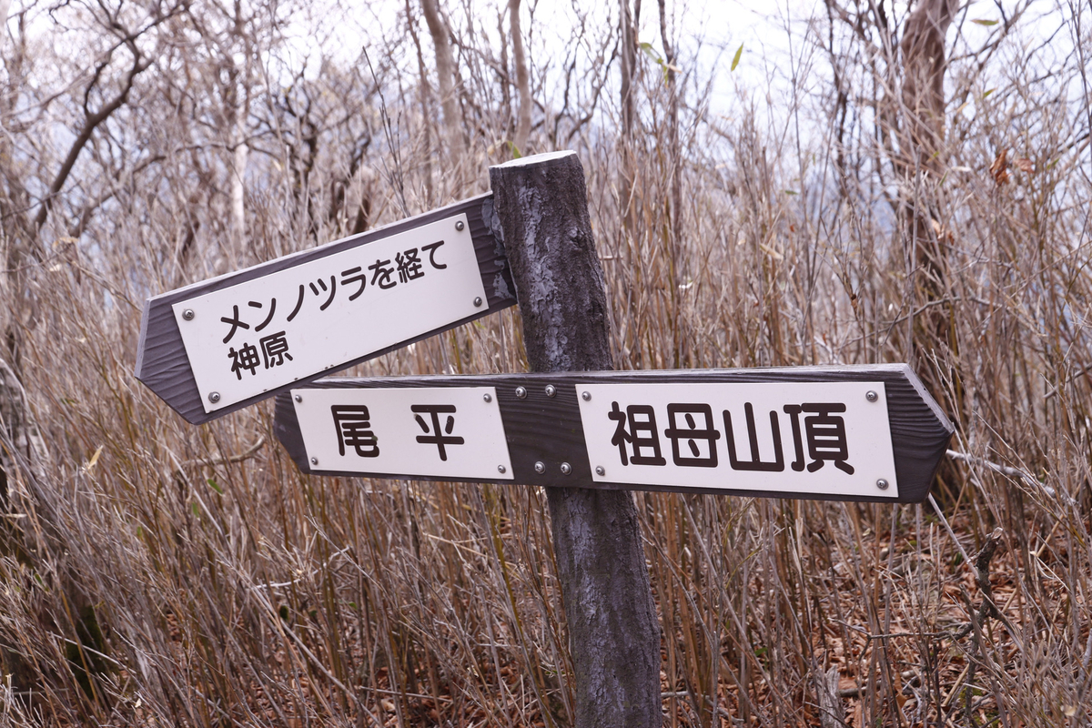 f:id:yo-ji03:20210429124358j:plain
