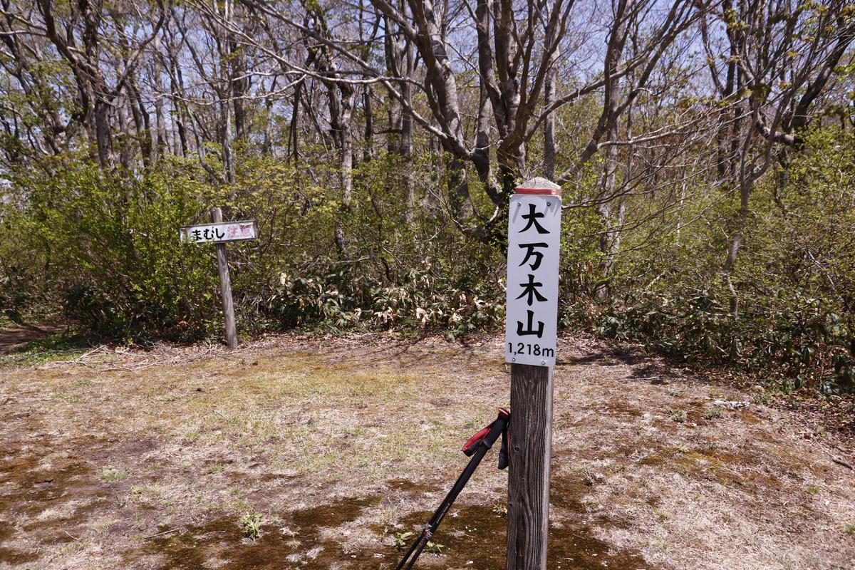f:id:yo-ji03:20210516144657j:plain