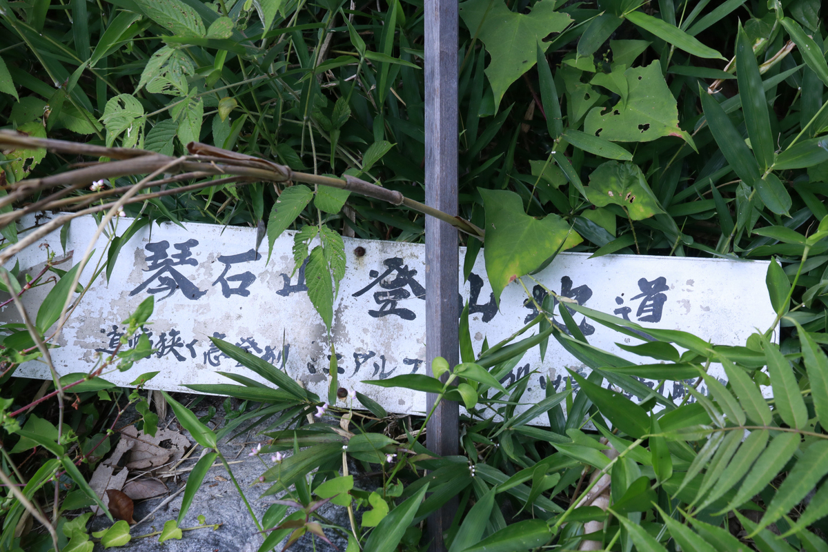 f:id:yo-ji03:20210808152110j:plain