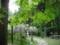 春日大社 万葉植物園