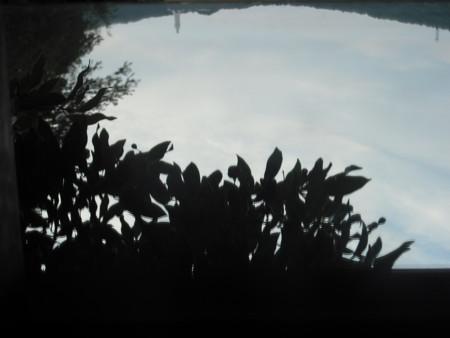 f:id:yo3519:20101023154135j:image