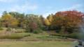 福山 芸術の秋