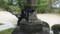 松壽寺の猫