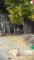 千光寺山への道