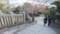 千光寺への道 秋
