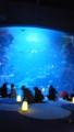 京都市水族館