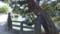 松江だんだん街歩き