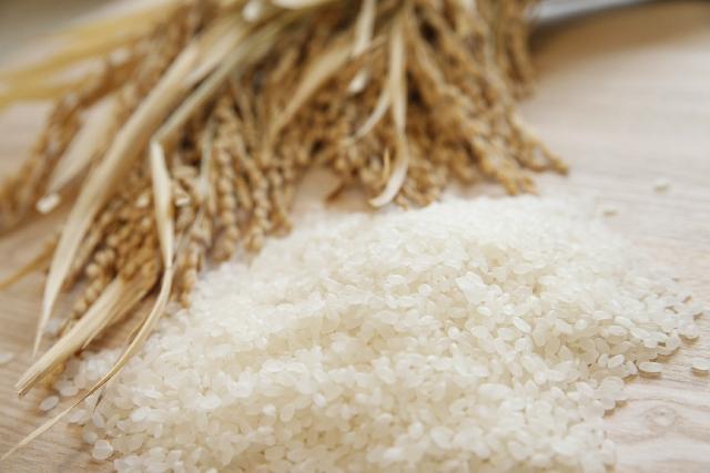 より美味しく食べるためのお米の選び方