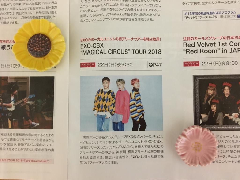 f:id:yofukashi_chocolate:20180720234218j:plain