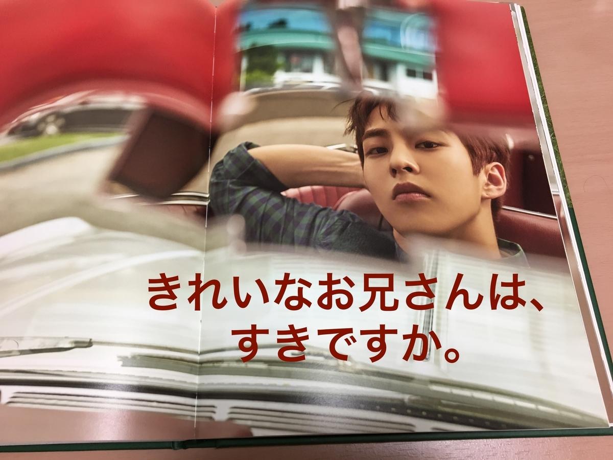 f:id:yofukashi_chocolate:20190521124950j:plain
