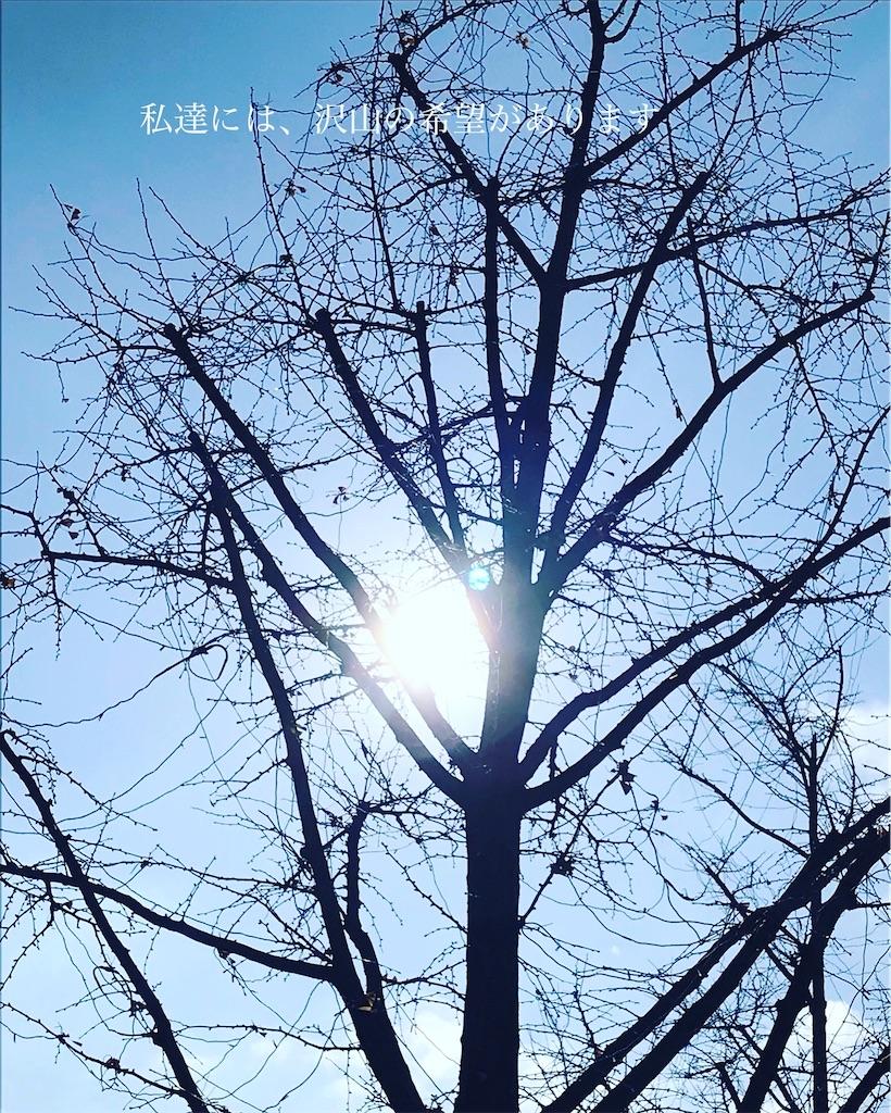 f:id:yogaho:20200118232058j:image