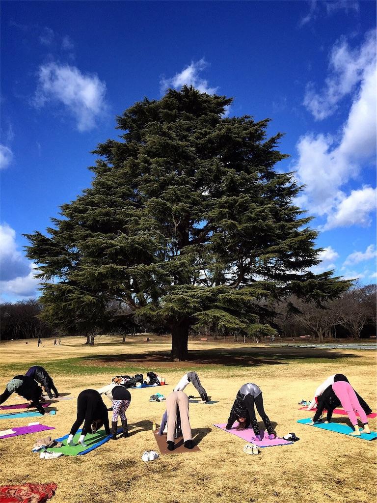f:id:yogamikimon:20170116084145j:image