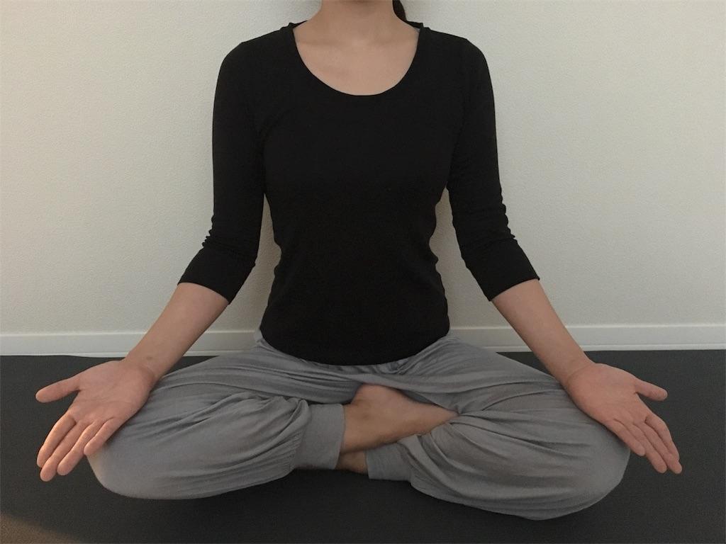 f:id:yogamikimon:20171202175437j:image