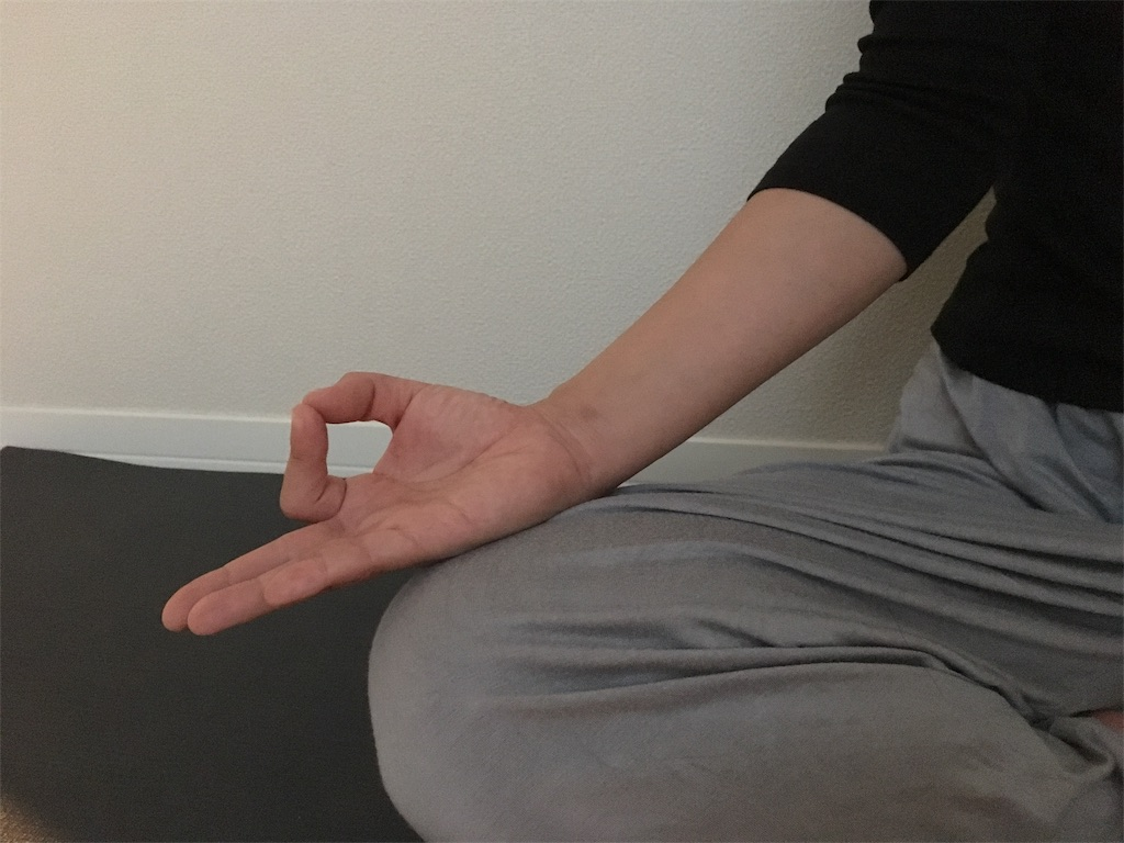 f:id:yogamikimon:20171202175656j:image