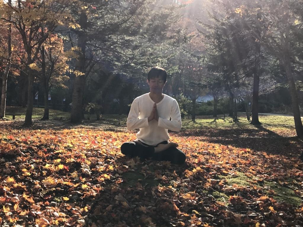 f:id:yogashala-taka:20171106234410j:plain