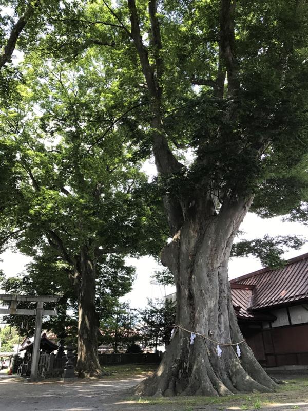 f:id:yohanotuki:20170812151334p:plain