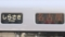 JR特急車 しらさぎ|名古屋
