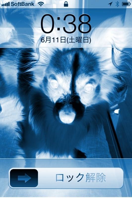 f:id:yoheiM:20110611005516j:image:w240