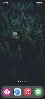時間術大全 森 時間術 スマホ 画面 あける 気を散らさない 森
