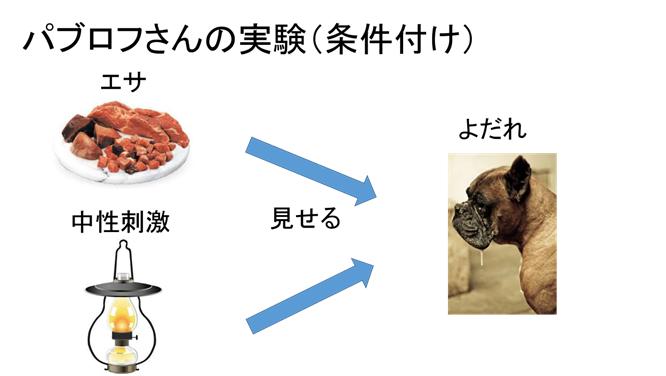 f:id:yoichi-15-jp:20170128115623p:plain