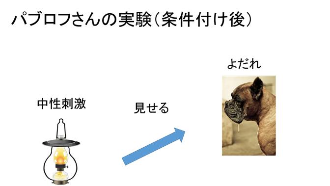 f:id:yoichi-15-jp:20170128115707p:plain