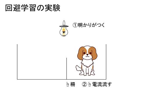f:id:yoichi-15-jp:20170128120322p:plain