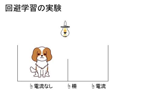 f:id:yoichi-15-jp:20170128120354p:plain
