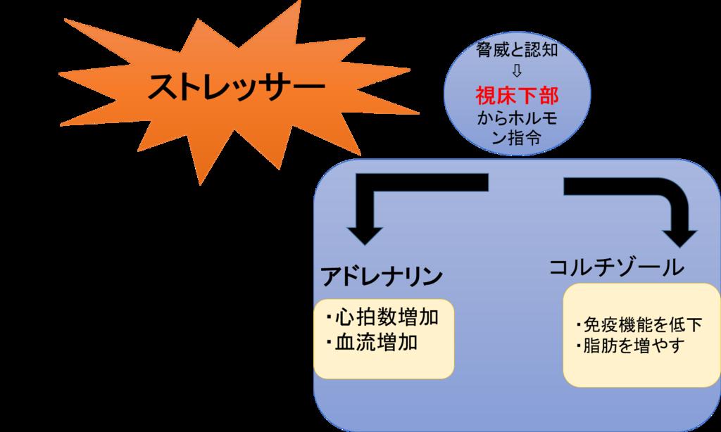 f:id:yoichi-15-jp:20170202151040p:plain