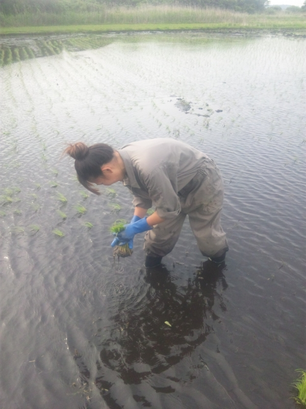 f:id:yoichiro-chiharu-miu:20120523155819j:image