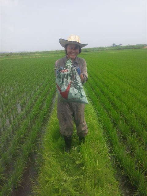 f:id:yoichiro-chiharu-miu:20120608112332j:image