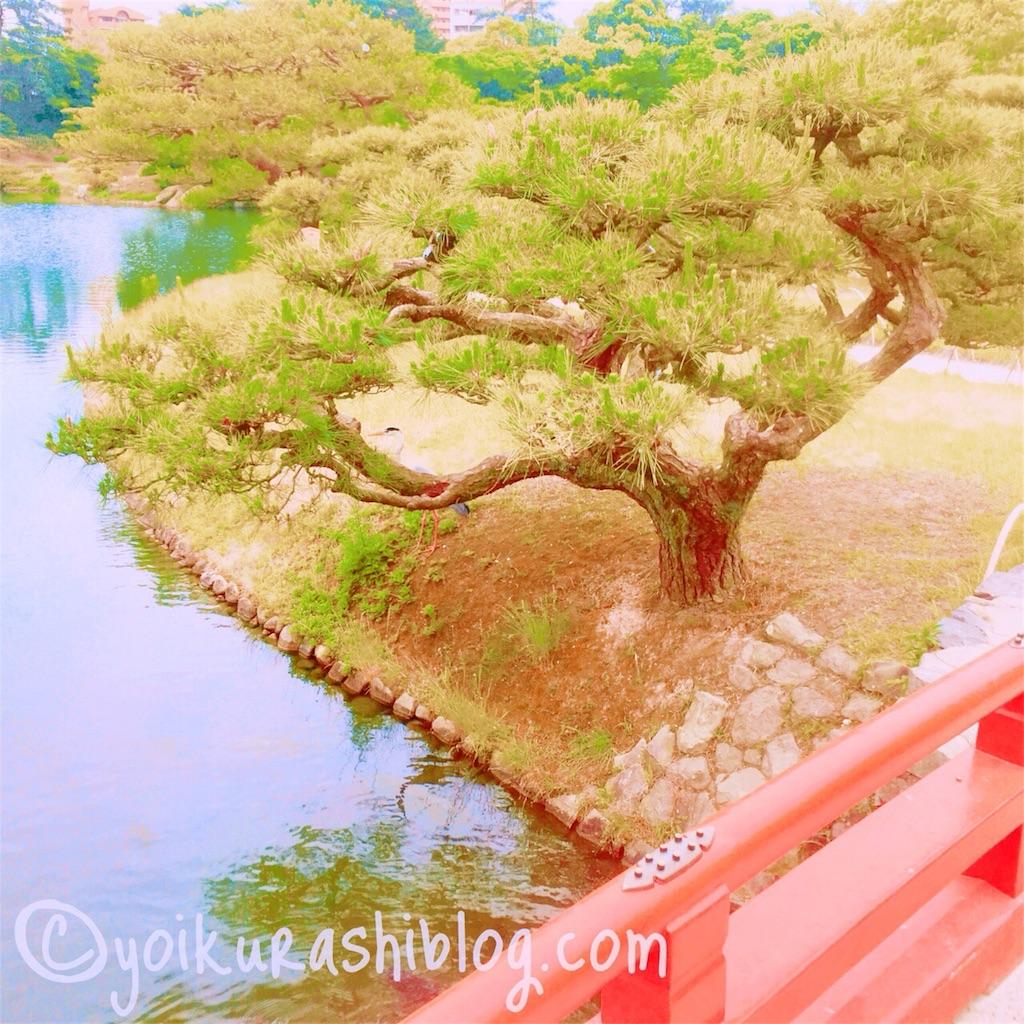 f:id:yoikurashiblog:20190327232519j:image