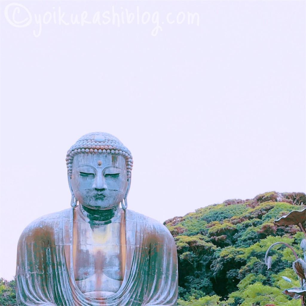 f:id:yoikurashiblog:20190417153616j:image
