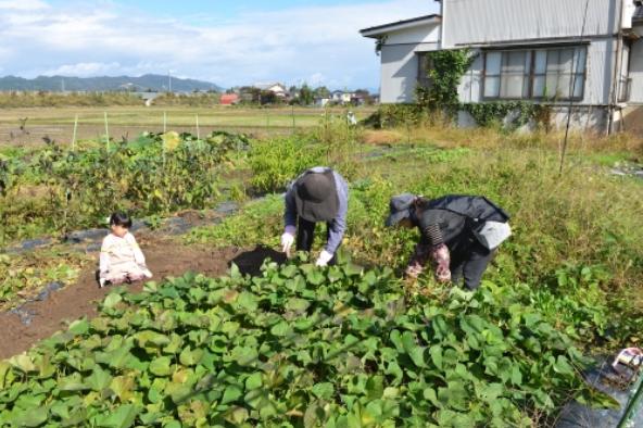 f:id:yoimonotachi:20201118084652p:plain