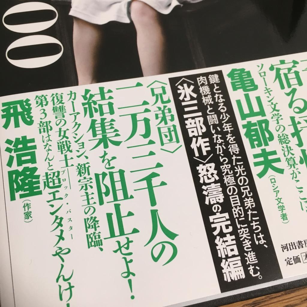 f:id:yoiyoRu:20160822124523j:plain