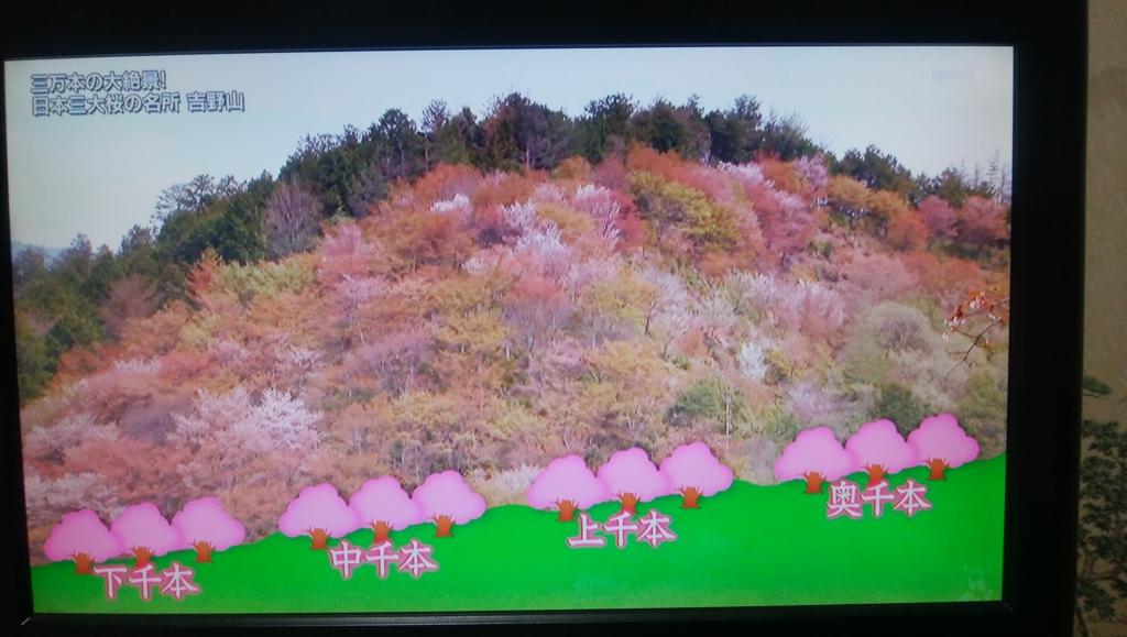 f:id:yoiyoi-kawakami:20170318220501j:plain