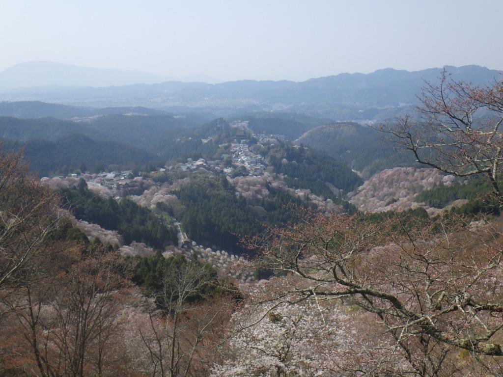 f:id:yoiyoi-kawakami:20170414170029j:plain